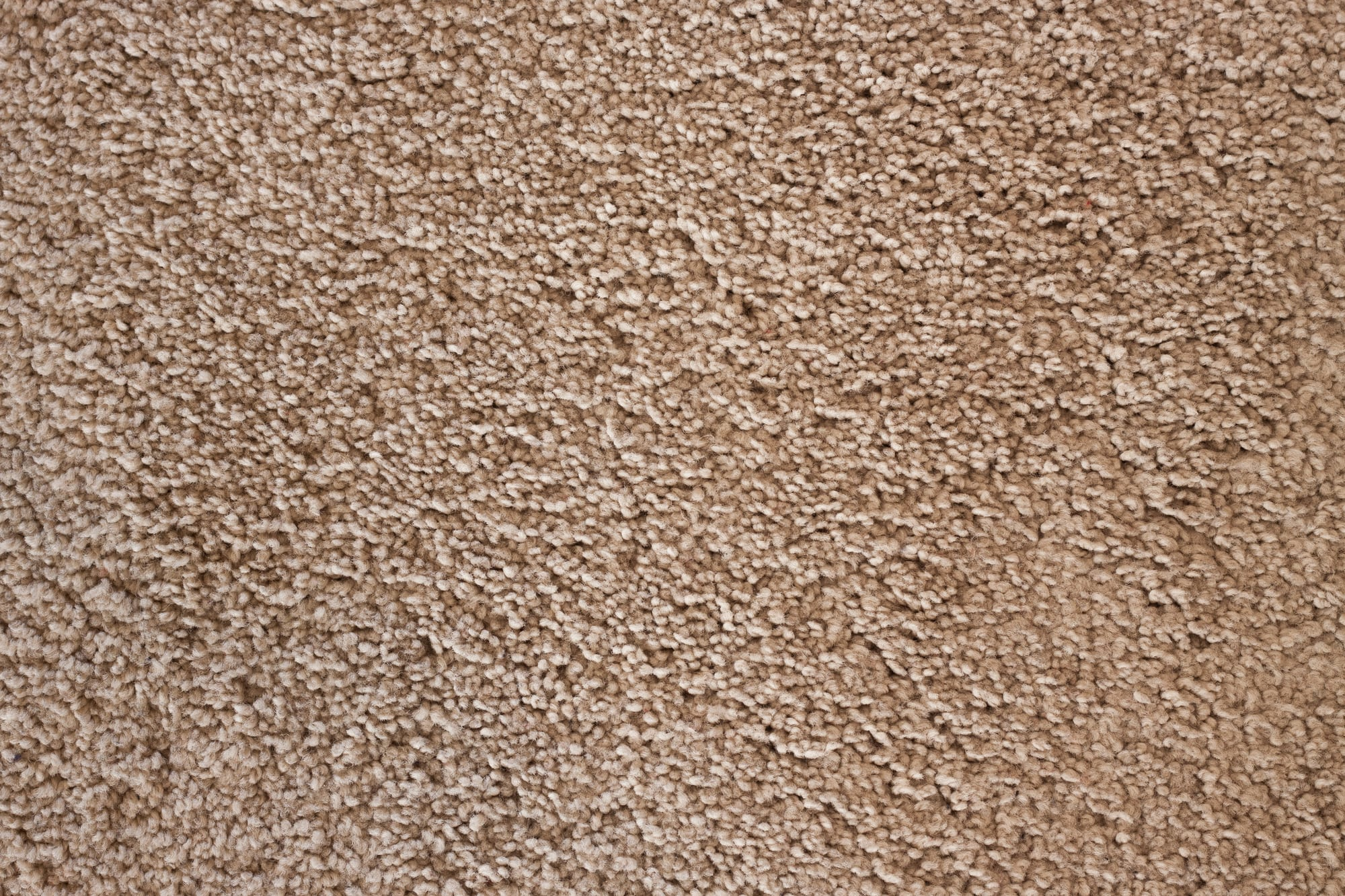 Carpet_flooring.jpg